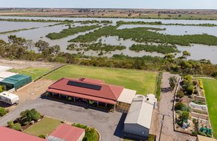 Picture of 8702 Princes Highway, Tailem Bend SA 5260