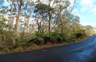 14 Nellies Glen Road, Katoomba NSW 2780