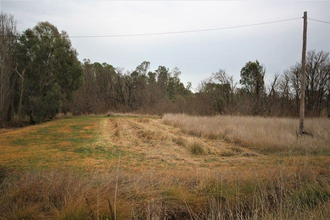 Picture of 4506 Hume Highway, TARCUTTA NSW 2652