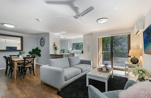 Picture of 7/29 Bellevue Terrace, St Lucia QLD 4067