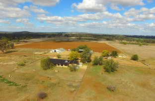 Picture of 191 Halls Lane, Inverell NSW 2360