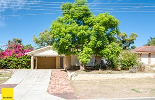 Picture of 14 Oakleaf Circle, Mirrabooka WA 6061