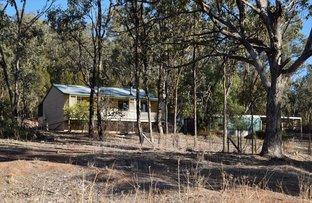 Picture of 'Fox Hill' 573 Blathery Creek Road, Neurea NSW 2820