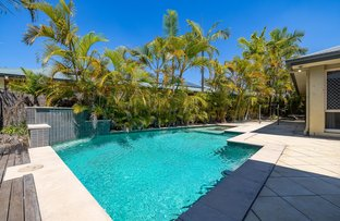 Picture of 8 Bridie Drive, Upper Coomera QLD 4209