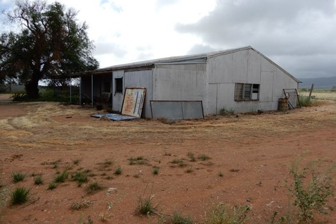Picture of 11218 Augusta Hwy, WARNERTOWN SA 5540