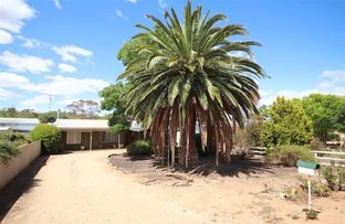 Picture of 17 Queen Mary Street, Mannum SA 5238