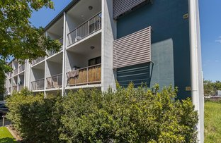 Picture of 4/14 Ferry Road, West End QLD 4101