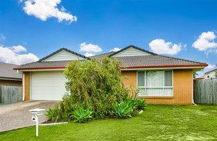 41 Hubner Drive, Rothwell QLD 4022