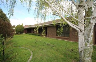 Picture of 3 Maxwell Street, Mount Gambier SA 5290