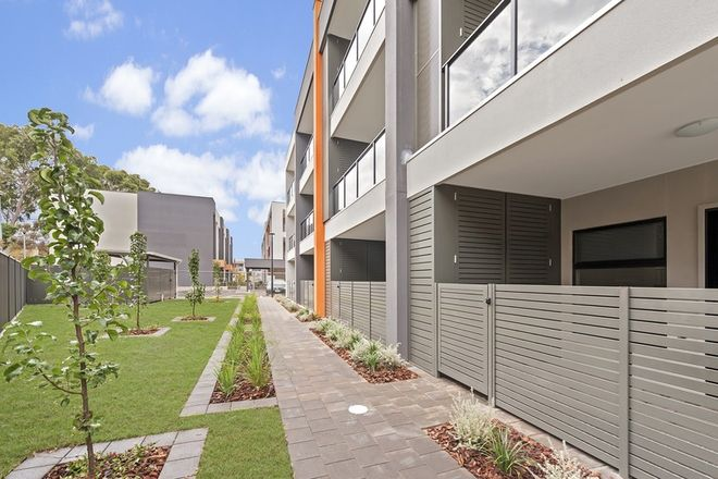 Picture of (D.H.A) Defence Housing Australia, MARDEN SA 5070