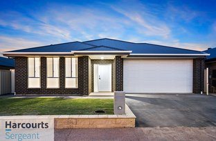 Picture of 17 Helene Street, Munno Para West SA 5115