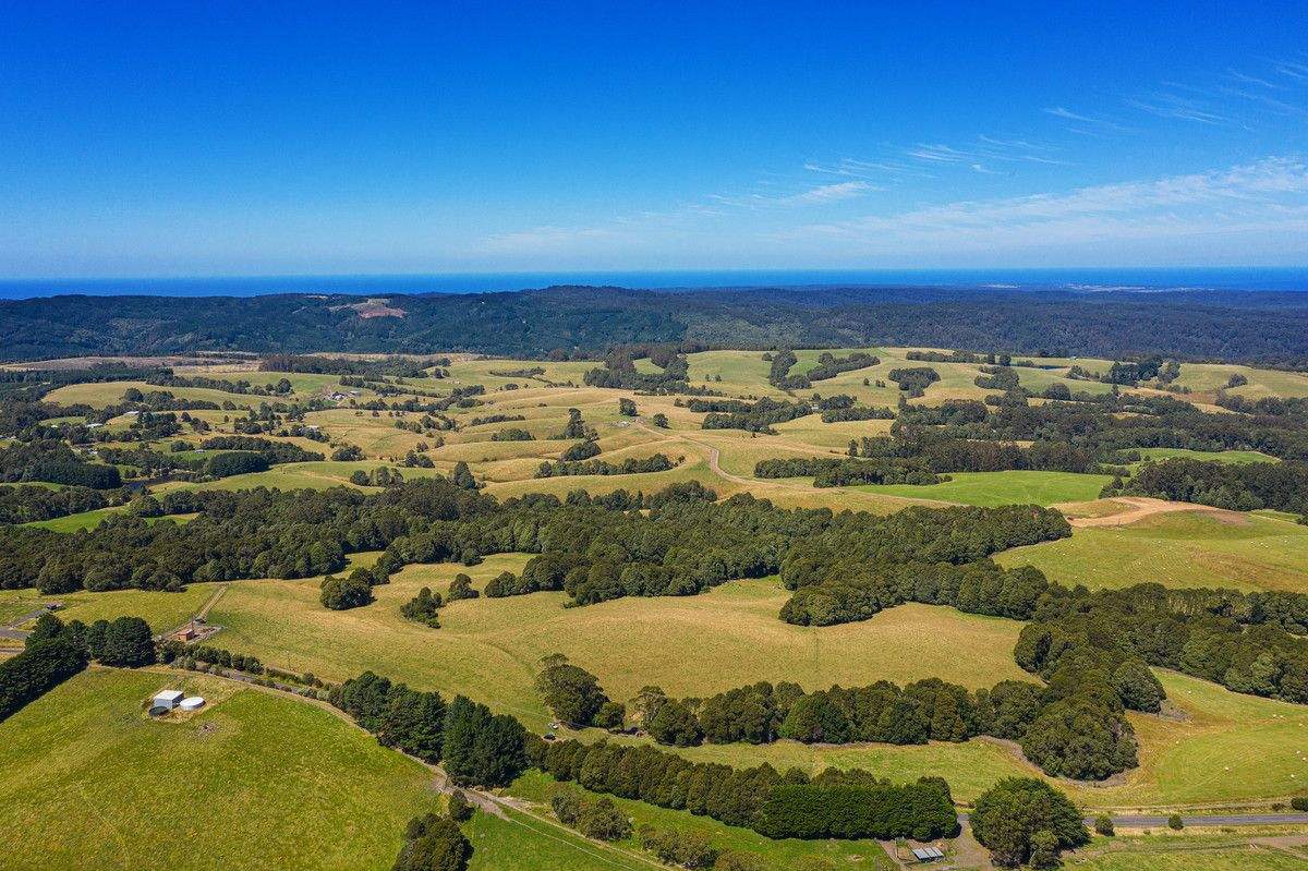 35 Beech Forest-Lavers Hill Road, Beech Forest VIC 3237, Image 2