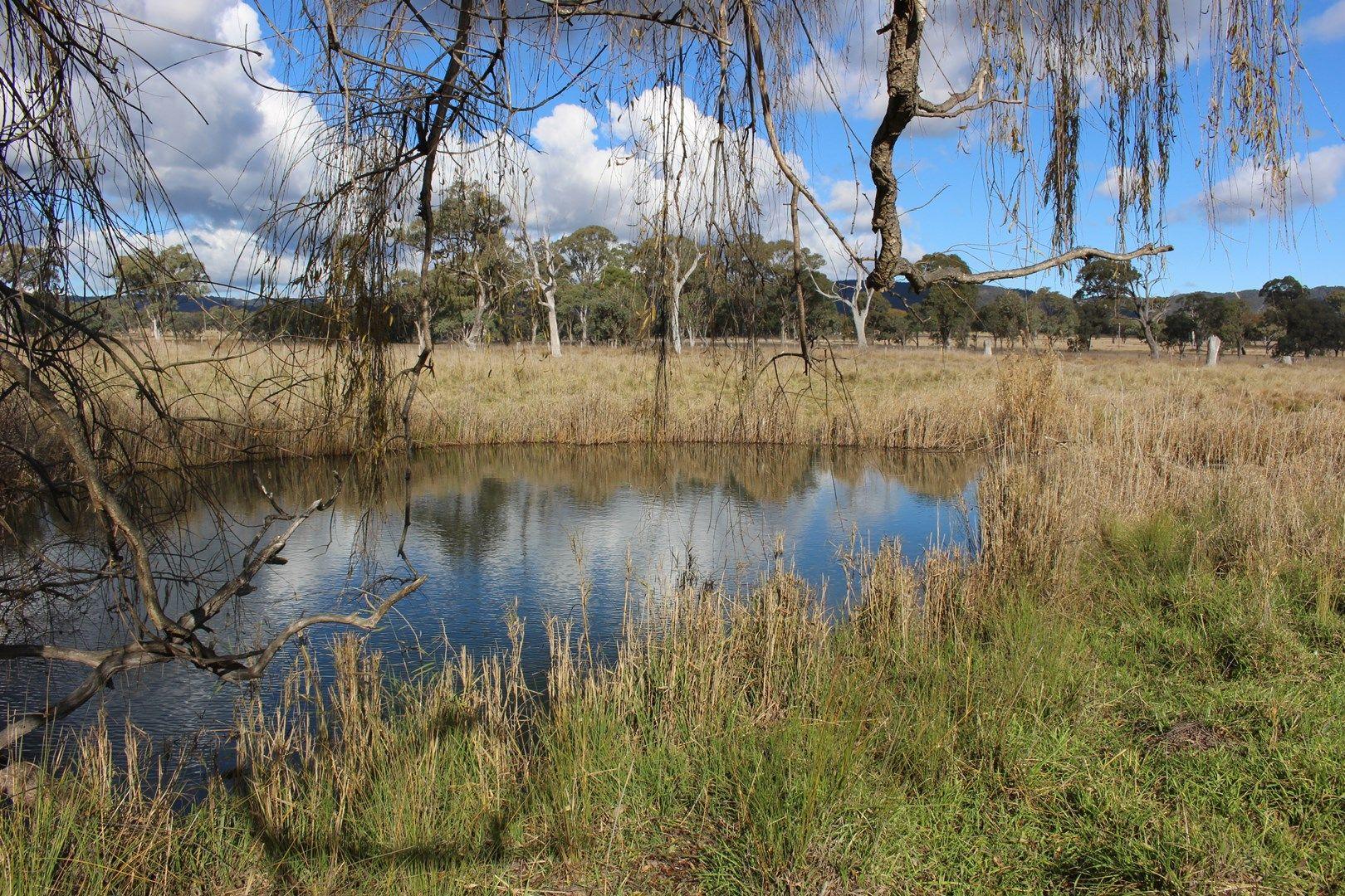 452 Bruxner Way, Tenterfield NSW 2372, Image 0