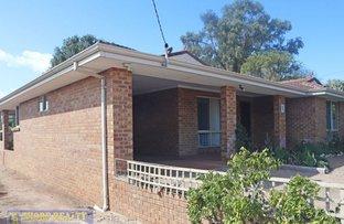 Picture of 8 Birch Street, Esperance WA 6450