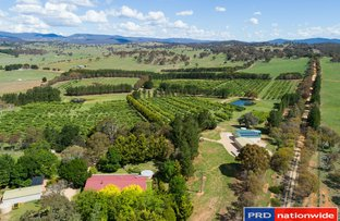 Picture of 89 Pollack Road, Hoskinstown NSW 2621
