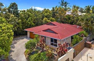 7 Ivy Court, Buderim QLD 4556