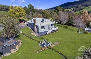 Picture of 24 Mountain Road, Lilydale TAS 7268