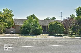 Picture of 24 Mitchell Street, Heathcote VIC 3523