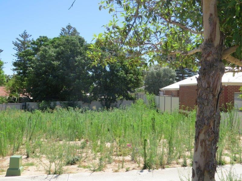 7b Cadd Street, Beaconsfield WA 6162, Image 1