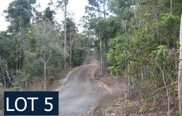 105 Moody Road, Strathdickie QLD 4800, Image 1