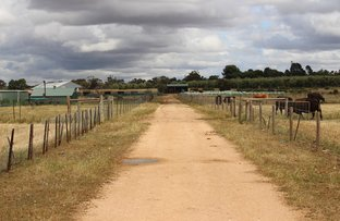 Picture of Allot 313 & 314 Mallee Highway, Pinnaroo SA 5304