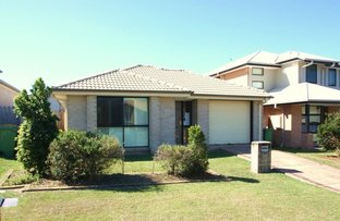 Picture of 14 Moorhen St, Coomera QLD 4209