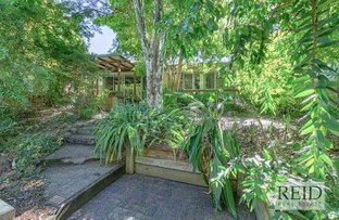 Picture of 1 Jirrima St, The Gap QLD 4061