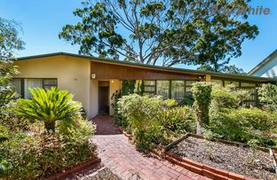 Picture of 27 Bowden Grove, Oaklands Park SA 5046