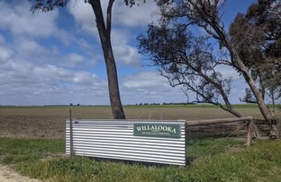 Picture of 333 OULTONS ROAD, Sheep Hills VIC 3392