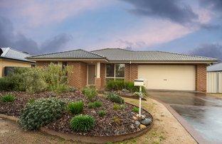 Picture of 126 Hotham Circuit, Thurgoona NSW 2640