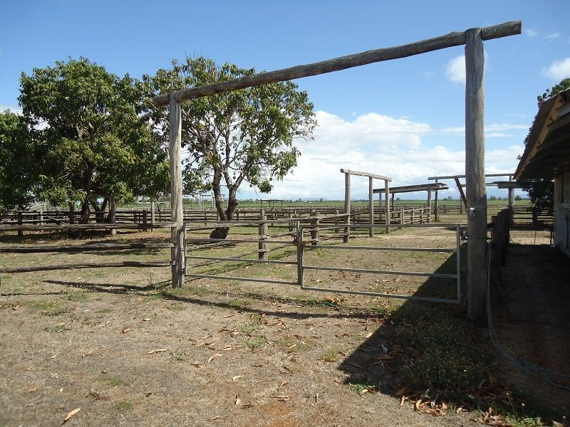 19 Dudley Rd, Proserpine QLD 4800, Image 1