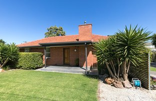 Picture of 67 Paringa Avenue, Somerton Park SA 5044