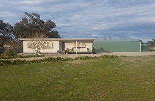 Picture of Lot 911 Cobram St, Berrigan NSW 2712
