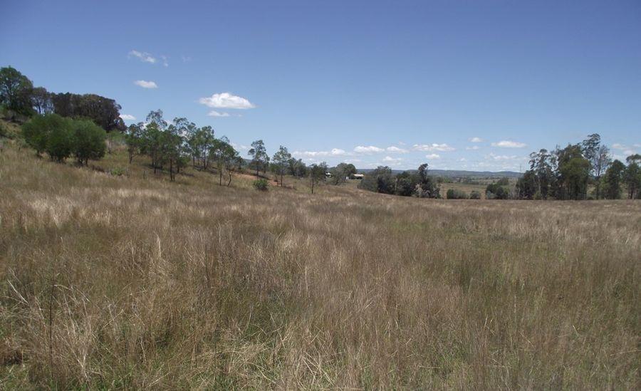 230 Louttits Road, Glenrock QLD 4605, Image 0