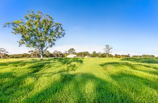 Picture of Arcadia NSW 2159