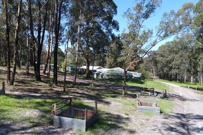 Picture of 300 Great Alpine Road, BRUTHEN VIC 3885