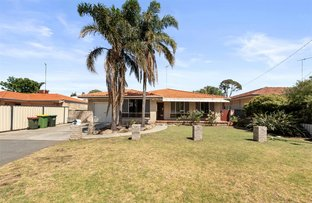 Picture of 145 Hamilton Road, Spearwood WA 6163