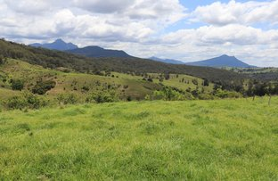 0 Snake Gully Road, Palen Creek QLD 4287