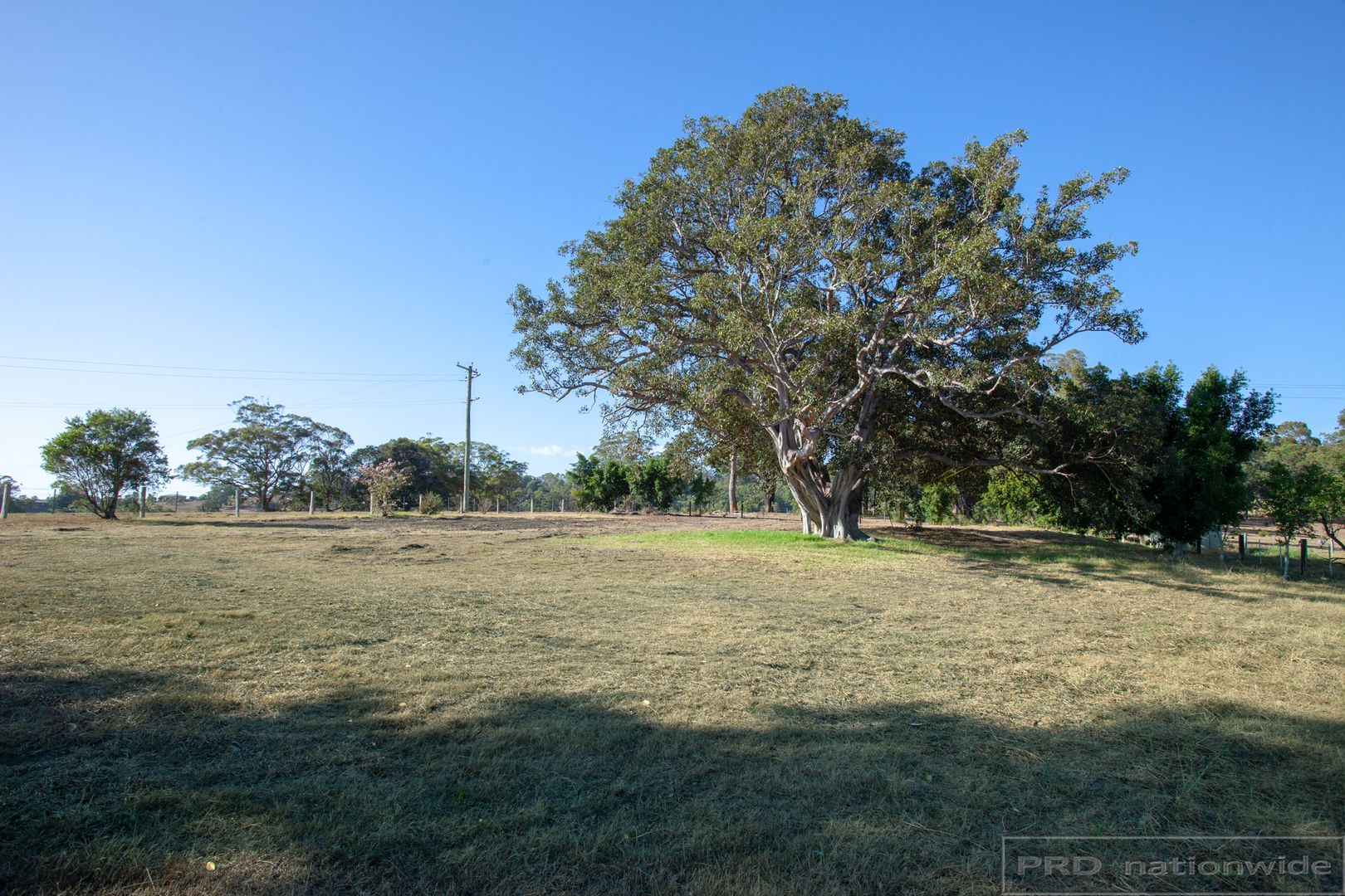 330 Black Hill Road, Black Hill NSW 2322, Image 2
