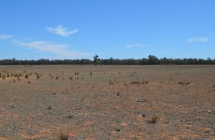 Picture of Gilgandra Road, Dubbo NSW 2830