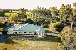 Picture of 1905 Ryan Road, St Germains VIC 3620