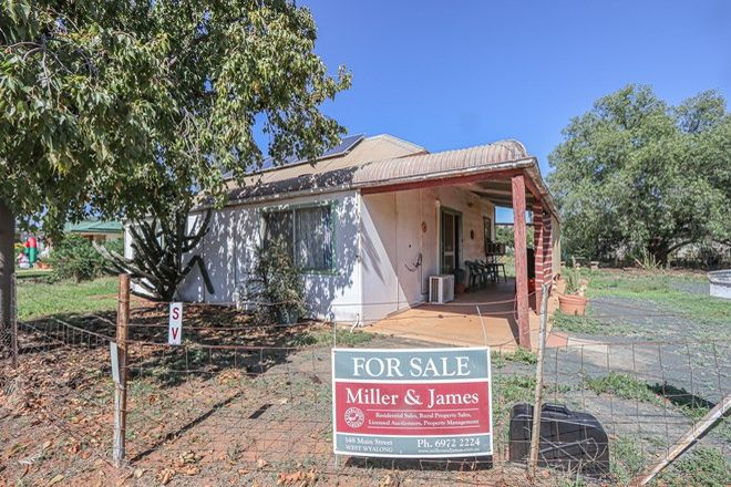 Picture of 40 Ungarie Street, UNGARIE NSW 2669