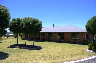Picture of 62 Brosnans Lane, Inverell NSW 2360