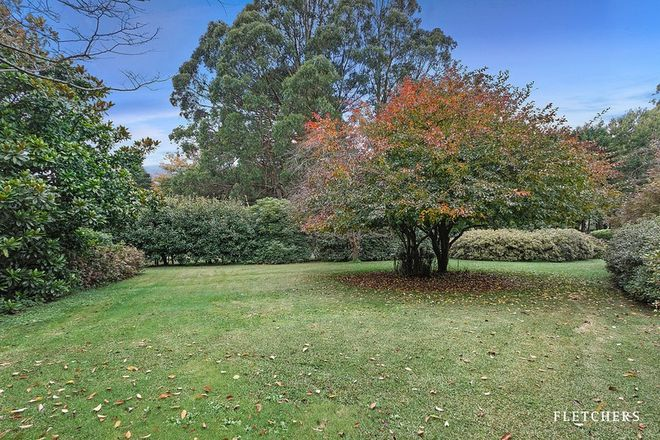 Picture of 15 Campbell Avenue, MOUNT DANDENONG VIC 3767