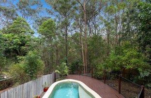 Picture of 79 Marmindie Street, Chapel Hill QLD 4069