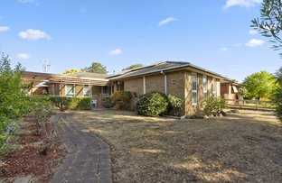 Picture of Wantirna VIC 3152