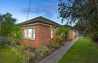 Picture of 18 Elwood Street, Surrey Hills VIC 3127