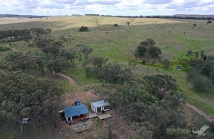 Picture of 449 Inglewood Road, Pikedale QLD 4380
