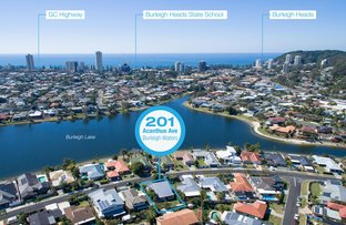 201 Acanthus Avenue, Burleigh Waters QLD 4220