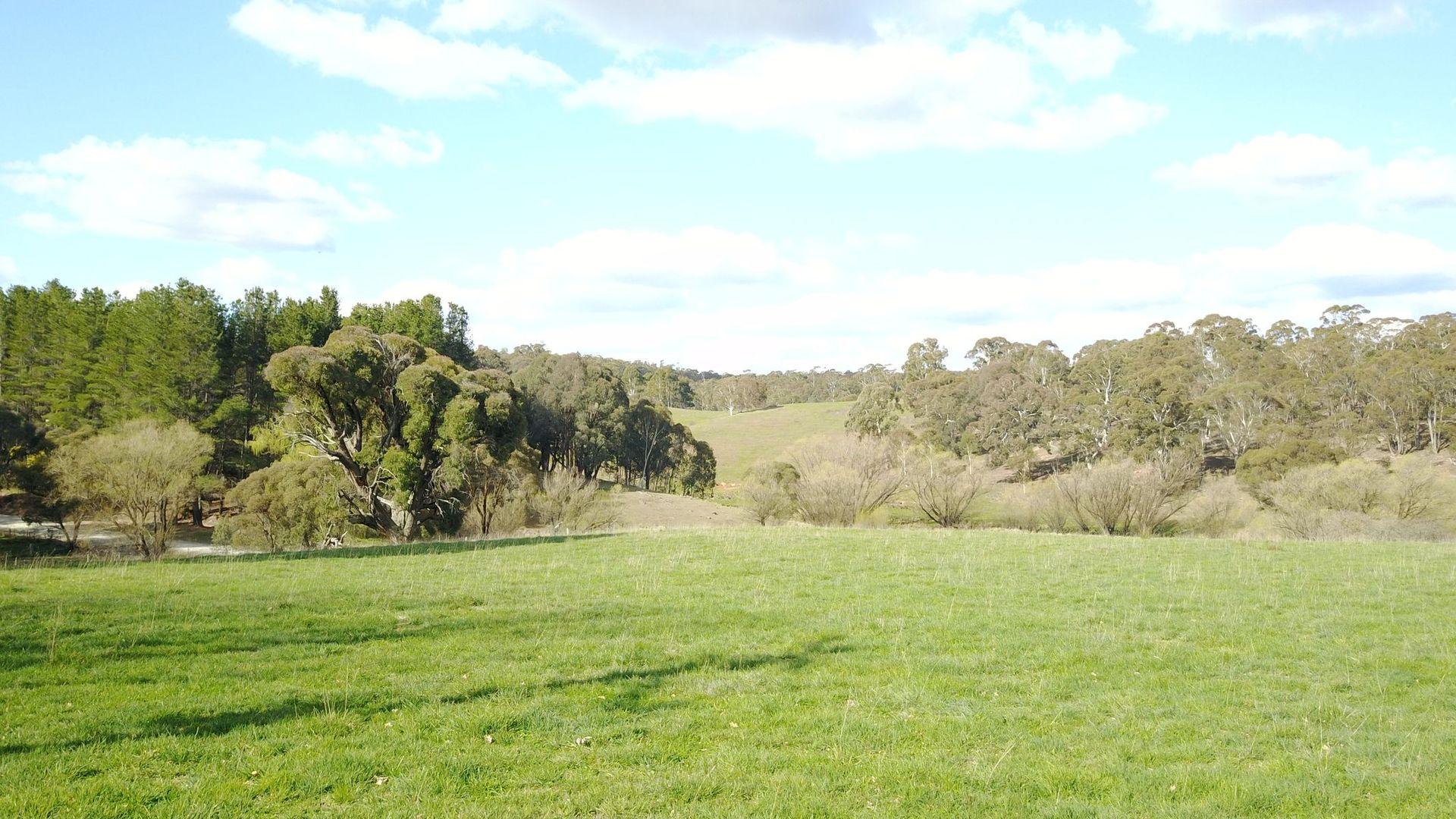 1317 Isabella Road, Oberon NSW 2787, Image 1